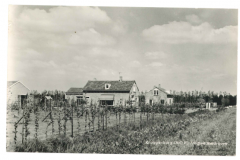 Kraggenburg - Fruitteeltbedrijf2