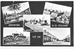 NOP - Groeten uit de Noordoostpolder14