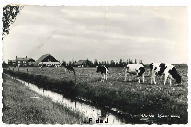 Rutten - Gemaalweg