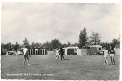 Kraggenburg - De Voorst - Camping3