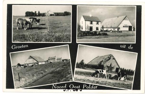 NOP - Groeten uit de Noordoostpolder17