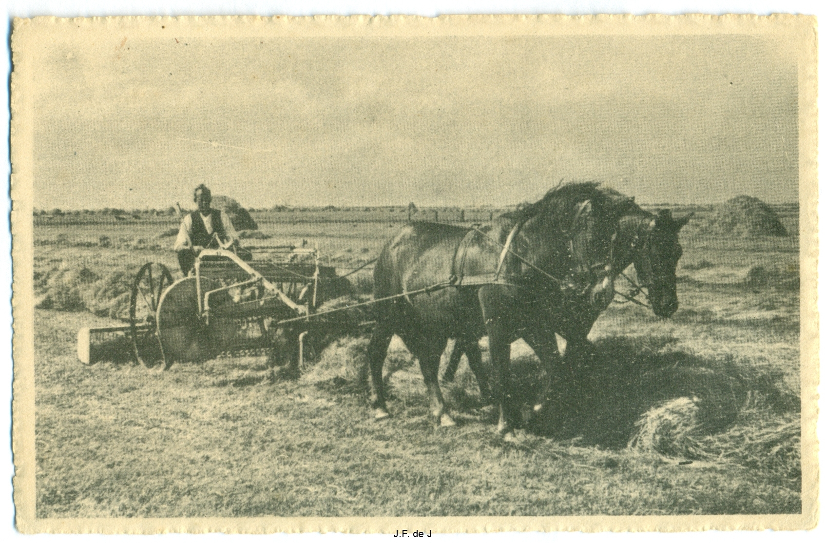 Paardenkar Landschap