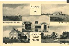 NOP - Groeten uit de Noordoostpolder20