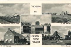 NOP - Groeten uit de Noordoostpolder22
